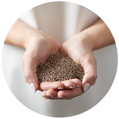 Chia Seeds ingredient being cradled in hands, nothing artificial ever
